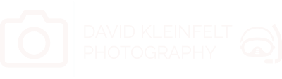 David Kleinfelt Photography